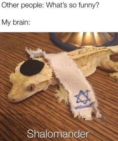 funny meme - Crochet - Other people: What's so funny? My brain: www. Shalomander