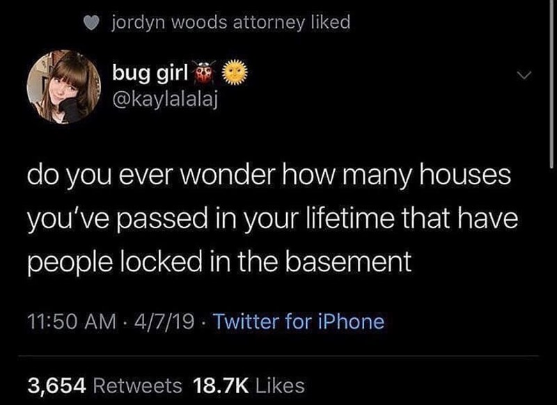 funny meme - Text - jordyn woods attorney liked bug girl @kaylalalaj do you ever wonder how many houses you've passed in your lifetime that have people locked in the basement 11:50 AM 4/7/19 Twitter for iPhone 3,654 Retweets 18.7K Likes
