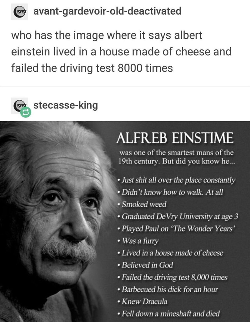funny meme - Text - avant-gardevoir-old-deactivated who has the image where it says albert einstein lived in a house made of cheese and failed the driving test 8000 times stecasse-king ALFREB EINSTIME was one of the smartest mans of the 19th century. But did you know he... Just shit all over the place constantly Didn't know how to walk. At all Smoked weed Graduated De Vry University at age 3 .Played Paul on 'The Wonder Years' .Was a furry .Lived in a house made of cheese .Believed in God