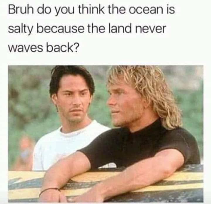 keanu reeves and blonde actor Bruh do you think the ocean is salty because the land never waves back?