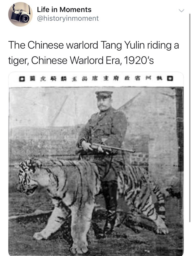 Interesting history photo - Bengal tiger - Life in Moments @historyinmoment The Chinese warlord Tang Yulin riding a tiger, Chinese Warlord Era, 1920's M O O