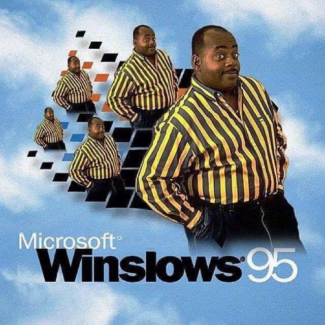 goofy meme - Album cover - Microsoft Winslows95