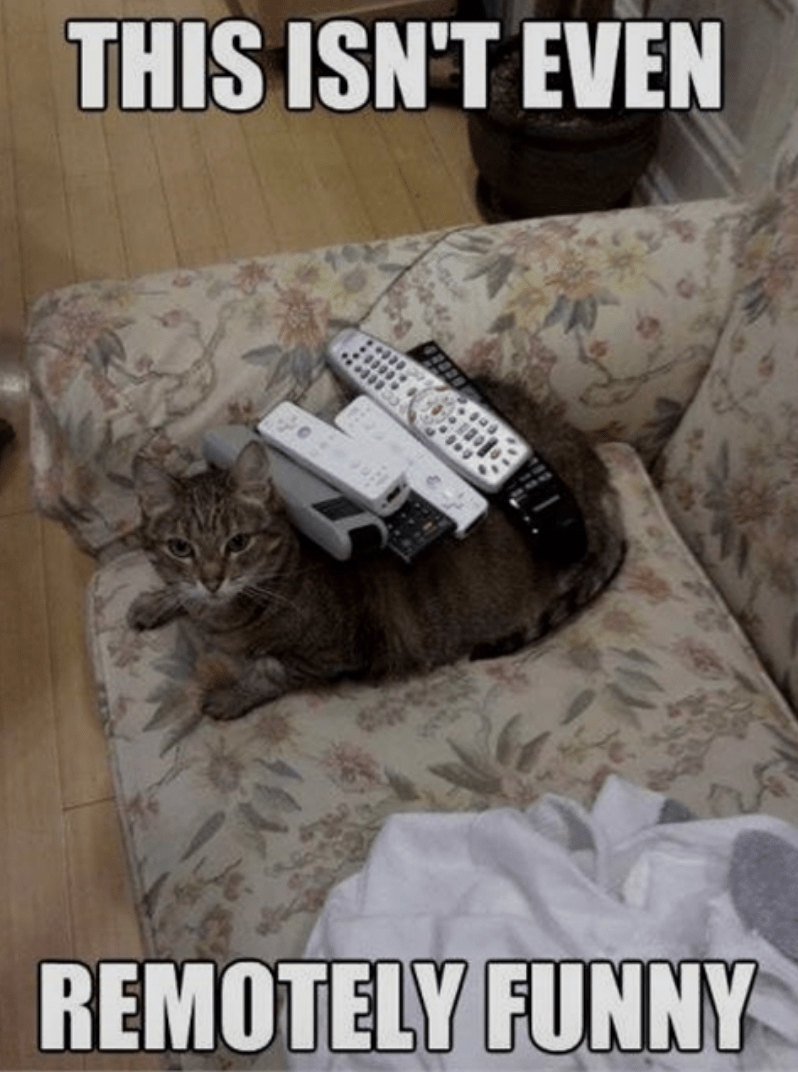 Couch - THIS ISN'T EVEN REMOTELY FUNNY