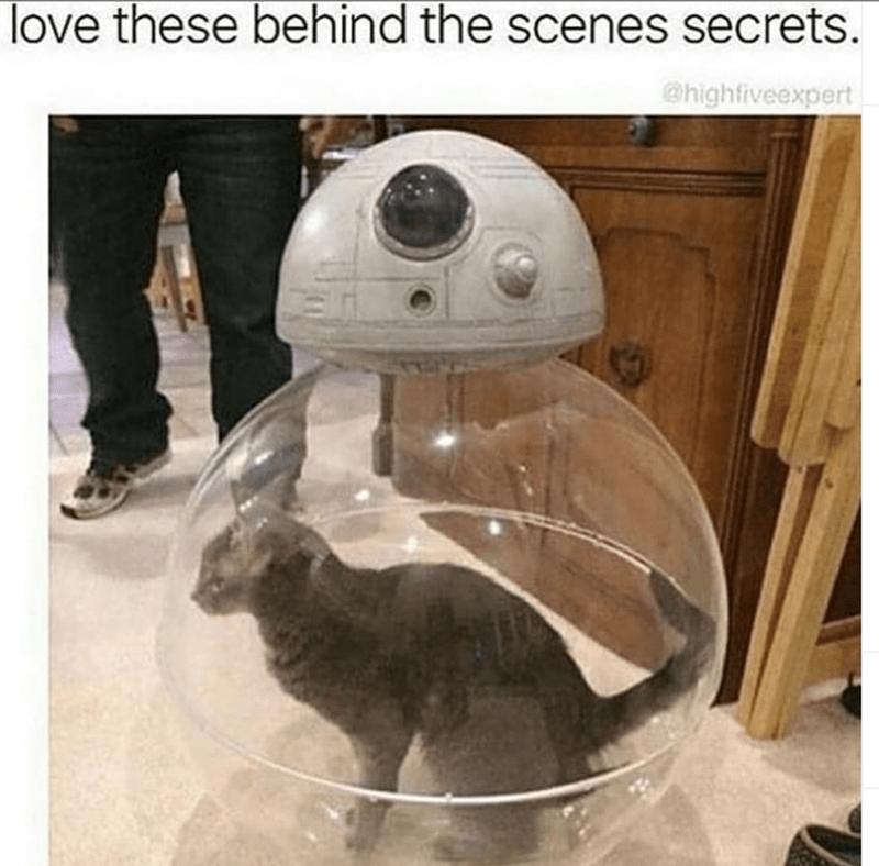 Helmet - love these behind the scenes secrets. @highfiveexpert