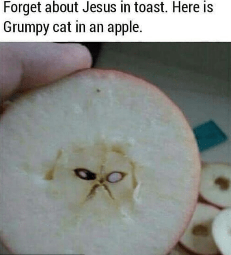 Apple - Forget about Jesus in toast. Here is Grumpy cat in an apple.
