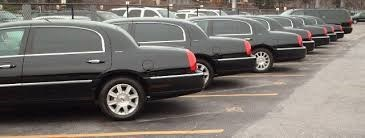 a line of identical black limousines are parked diagonally in a row next to each other in a parking lot