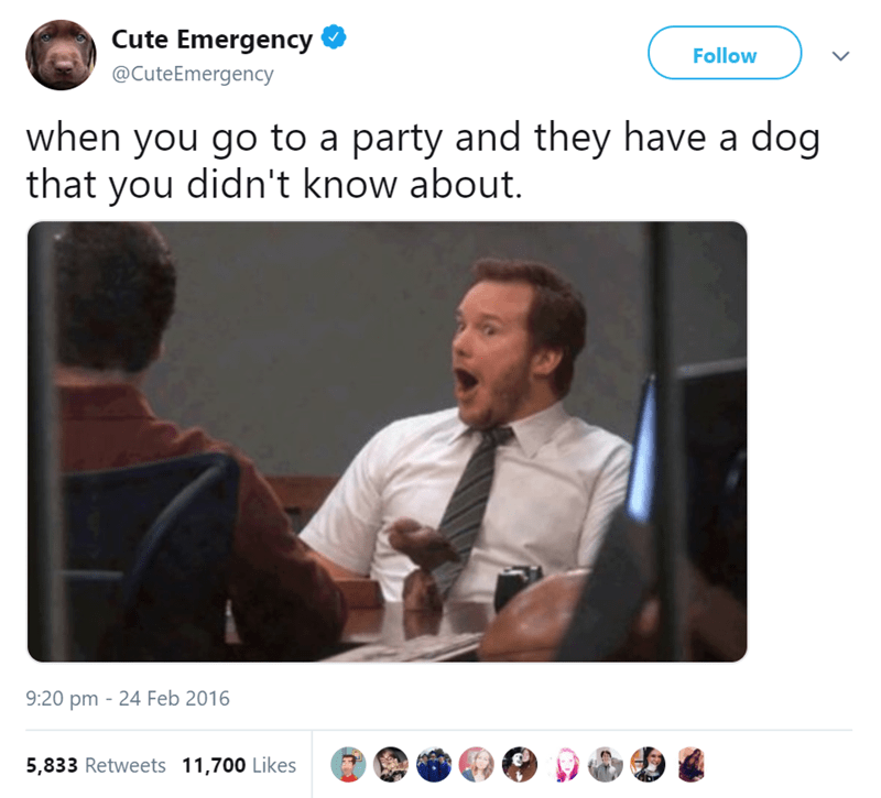 Text - Cute Emergency Follow @CuteEmergency when you go to a party and they have a dog that you didn't know about. 9:20 pm 24 Feb 2016 5,833 Retweets 11,700 Likes