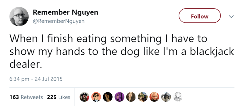 Text - Remember Nguyen Follow @RememberNguyen When I finish eating something I have to show my hands to the dog like I'm a blackjack dealer. 6:34 pm 24 Jul 2015 163 Retweets 225 Likes