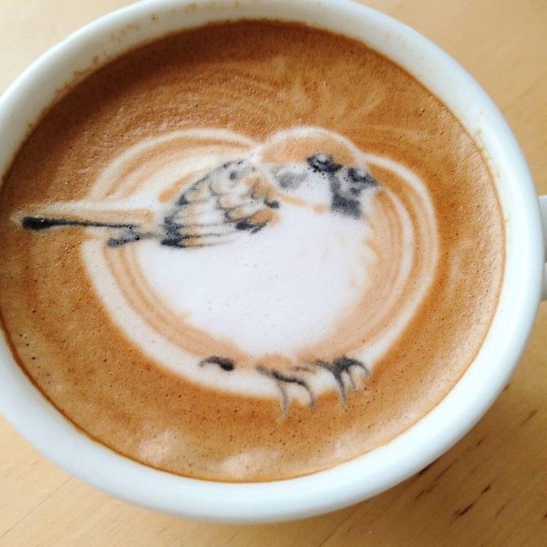 coffee bird art - Latte