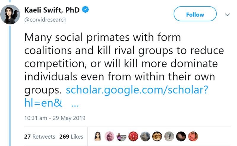 Text - Kaeli Swift, PhD Follow @corvidresearch Many social primates with form coalitions and kill rival groups to reduce competition, or will kill more dominate individuals even from within their own groups. scholar.google.com/scholar? hl en& 10:31 am 29 May 2019 27 Retweets 269 Likes