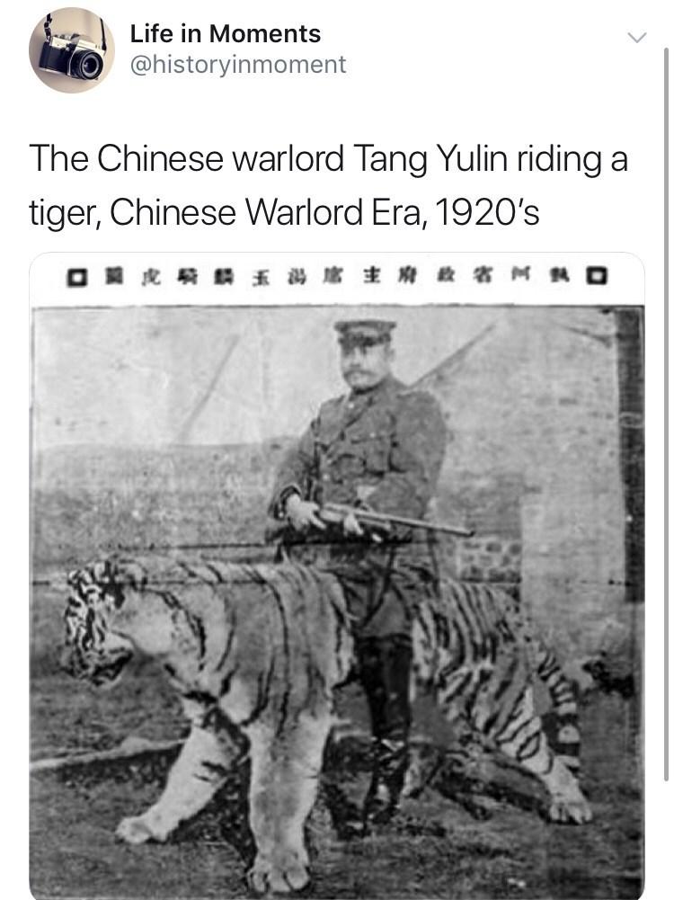 Bengal tiger - Life in Moments @historyinmoment The Chinese warlord Tang Yulin riding a tiger, Chinese Warlord Era, 1920's M O O