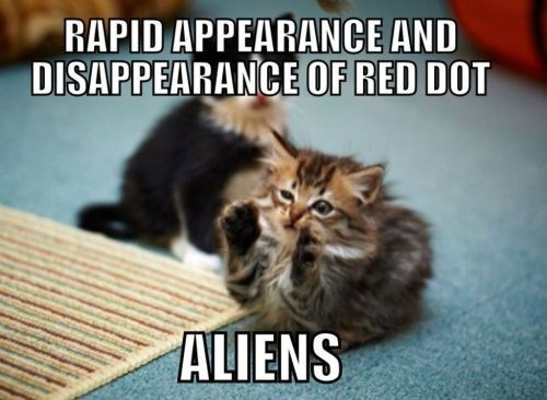 funny cat meme of kitten that thinks the laser red dot is only explained by aliens