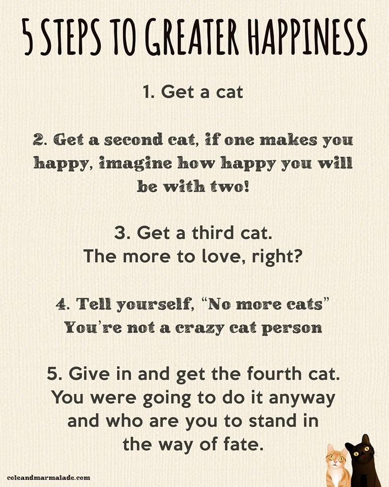 list of self help tips and they are basically all recommending to get a cat