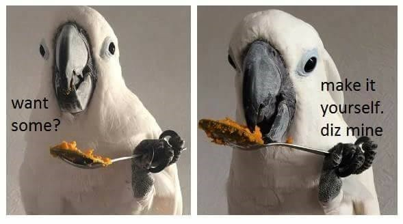 Parrot - make it yourself. diz mine want some?