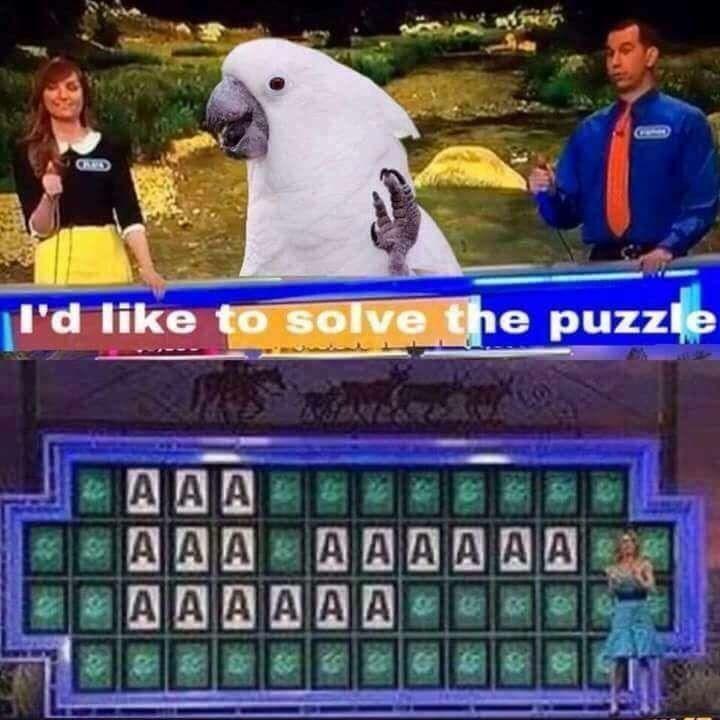 Parrot - I'd like to solve the puzzle A AA A A A A A AAAA AAAAAA