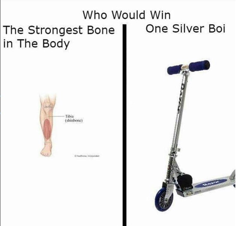 meme - Kick scooter - Who Would Win The Strongest Bone in The Body One Silver Boi Tibia (shinbone)