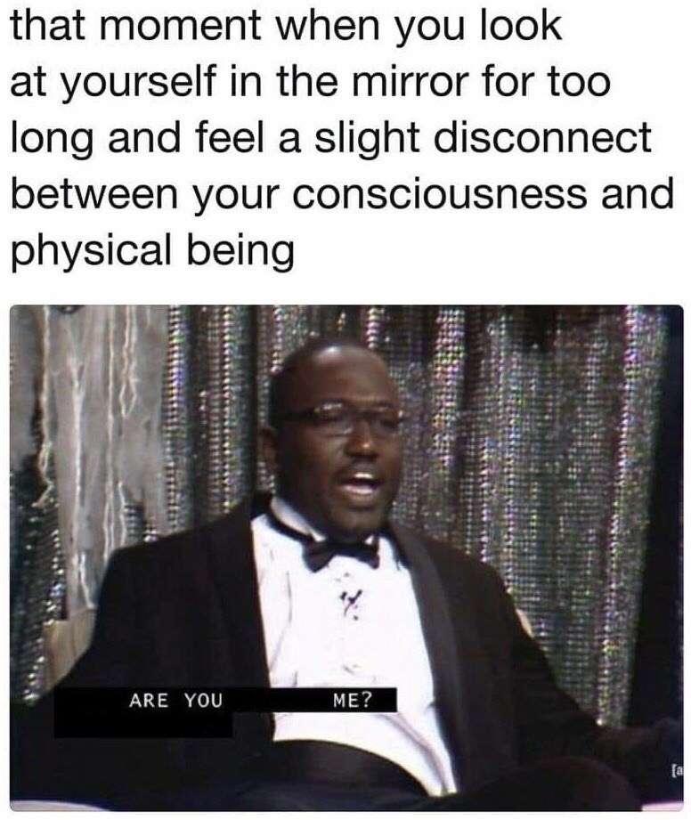 meme - Text - that moment when you look at yourself in the mirror for too long and feel a slight disconnect between your consciousness and physical being ME? ARE YOU [a