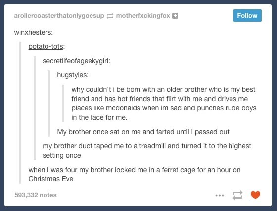 Text - arollercoasterthatonlygoesup motherfxckingfox Follow winxhesters: potato-tots: secretlifeofageekygirl: hugstyles: why couldn't i be born with an older brother who is my best friend and has hot friends that flirt with me and drives me places like mcdonalds when im sad and punches rude boys in the face for me. My brother once sat on me and farted until passed out my brother duct taped me to a treadmill and turned it to the highest setting once when I was four my brother locked me in a ferre
