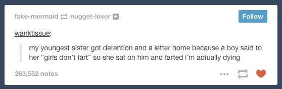 """Text - fake-mermaid nugget-lover Follow wanktissue: my youngest sister got detention and a letter home because a boy said to her """"girls don't fart"""" so she sat on him and farted i'm actually dying 263,552 notes"""