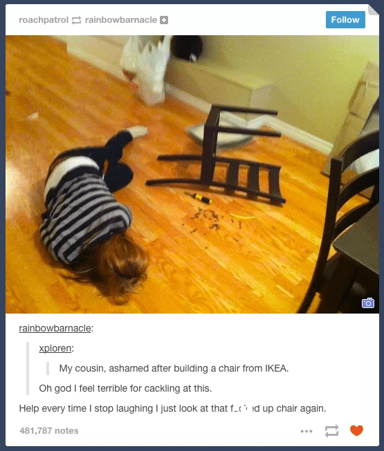 Design - roachpatrolrainbowbarnacle Follow rainbowbarnacle: xploren: My cousin, ashamed after building a chair from IKEA. Oh god I feel terrible for cackling at this. Help every time I stop laughing I just look at that ft d up chair again 481,787 notes