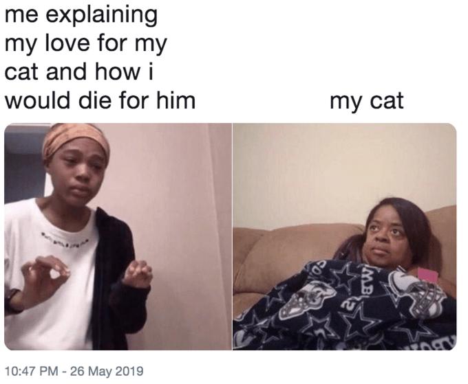 me explaining to my mom twitter meme