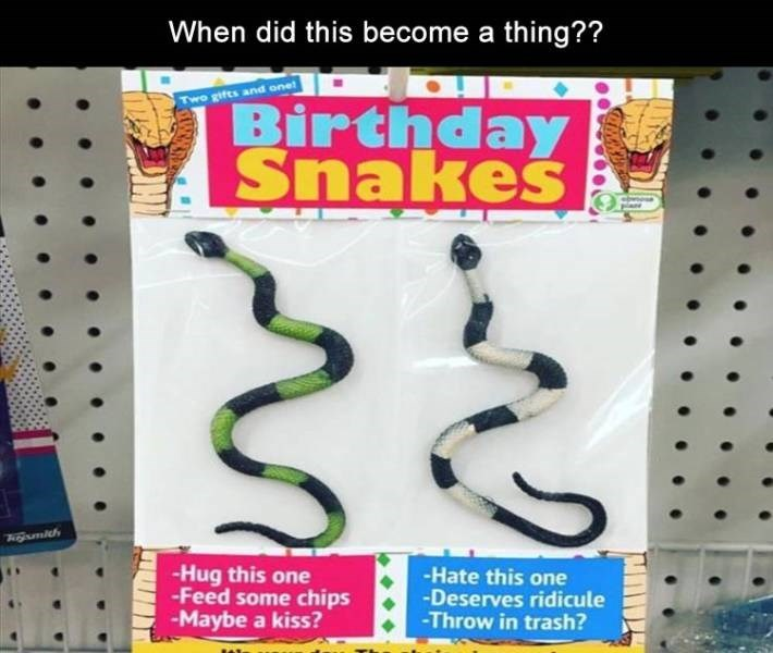 meme - Font - When did this become a thing?? a Birthday Snakes Two gifts and one -Hug this one -Feed some chips -Maybe a kiss? -Hate this one -Deserves ridicule -Throw in trash?