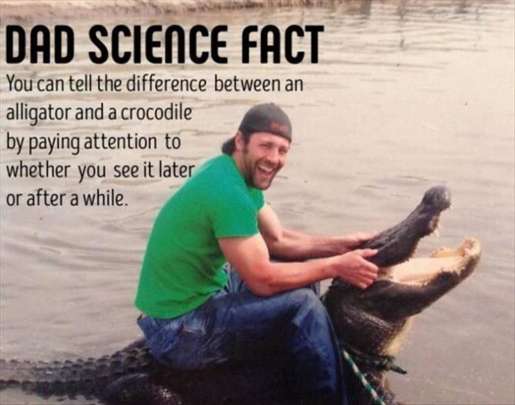 meme - Adaptation - DAD SCIENCE FACT You can tell the difference between an alligator and a crocodile by paying attention to whether you see it later or after a while.