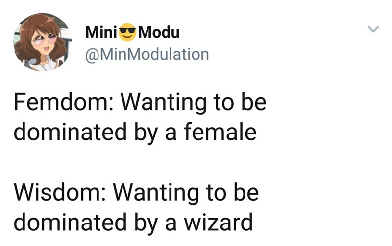 """Funny tweet that reads, """"Femdom: Wanting to be dominated by a female; Wisdom: Wanting to be dominated by a wizard"""""""