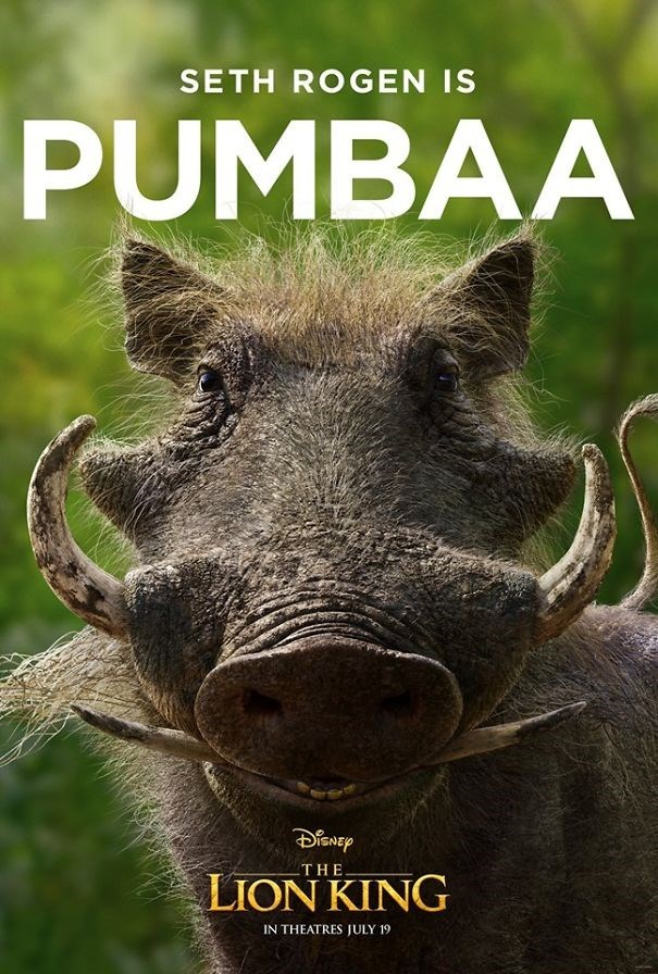 Suidae - SETH ROGEN IS PUMBAA THE LION KING IN THEATRES JULY 19