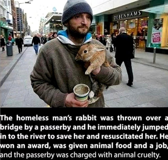 wholesome meme - Snapshot - DEBENHAMS 303 The homeless man's rabbit was thrown bridge by a passerby and he immediately jumped in to the river to save her and resuscitated her. He won an award, was given animal food and a job, and the passerby was charged with animal cruelty.