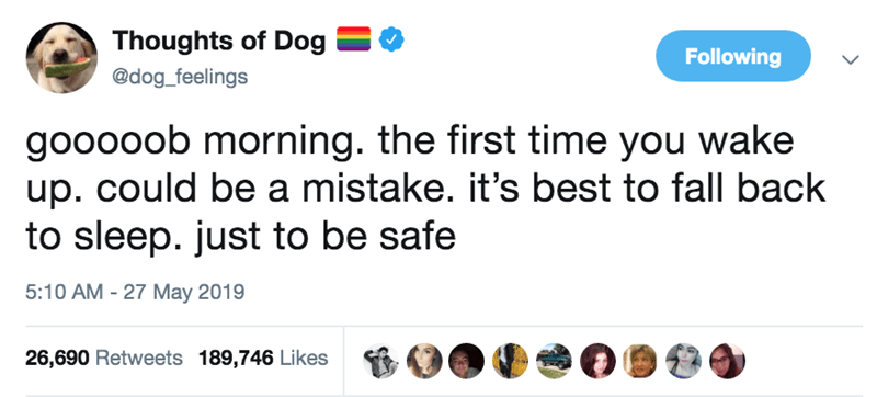 Text - Thoughts of Dog Following @dog_feelings gooooob morning. the first time you wake up. could be a mistake. it's best to fall back to sleep. just to be safe 5:10 AM 27 May 2019 26,690 Retweets 189,746 Likes