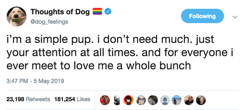 Text - Thoughts of Dog Following @dog_feelings i'm a simple pup. i don't need much. just your attention at all times. and for everyone i ever meet to love me a whole bunch 3:47 PM 5 May 2019 23,198 Retweets 181,254 Likes