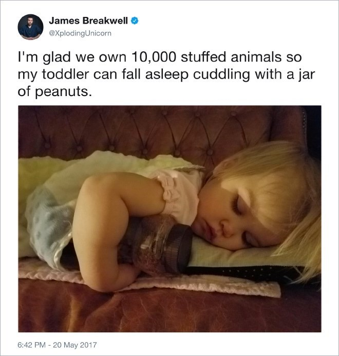 Text - James Breakwell @XplodingUnicorn I'm glad we own 10,000 stuffed animals so my toddler can fall asleep cuddling with a jar of peanuts 6:42 PM - 20 May 2017