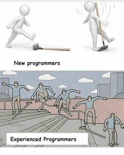 Cartoon - New programmers Experienced Programmers