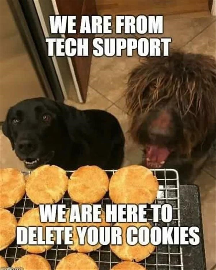 dog memes - Dog - WE ARE FROM TECH SUPPORT WEARE HERE TO DELETE YOUR COOKIES nmm