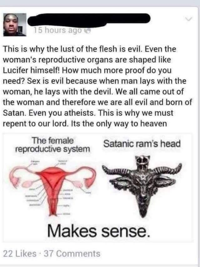 Text - 15 hours ago This is why the lust of the flesh is evil. Even the woman's reproductive organs are shaped like Lucifer himself! How much more proof do you need? Sex is evil because when man lays with the woman, he lays with the devil. We all came out of the woman and therefore we are all evil and born of Satan. Even you atheists. This is why we must repent to our lord. Its the only way to heaven The female reproductive system Satanic ram's head Makes sense. 22 Likes 37 Comments