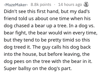 Text - -MazeMaker- 8.8k points 14 hours ago Didn't see this first hand, but my dad's friend told us about one time when his dog chased a bear up a tree. In a dog vs. bear fight, the bear would win every time, but they tend to be pretty timid so this dog treed it. The guy calls his dog back into the house, but before leaving, the dog pees on the tree with the bear in it. Super ballsy on the dog's part.