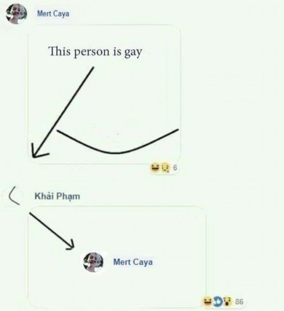 Text - Mert Caya This person is gay Khai Pham Mert Caya O 86