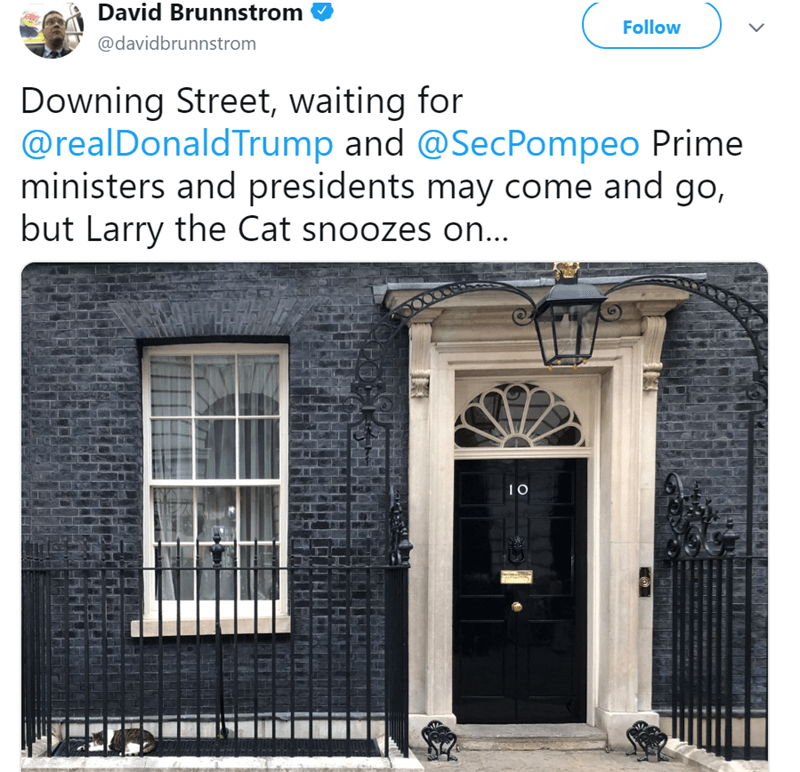 Property - David Brunnstrom Follow @davidbrunnstrom Downing Street, waiting for @realDonaldTrump and @SecPompeo Prime ministers and presidents may come and go, but Larry the Cat snoozes on...