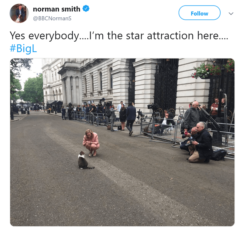 Pedestrian - norman smith Follow @BBCNormanS Yes everybody... I'm the star attraction here... #BigL