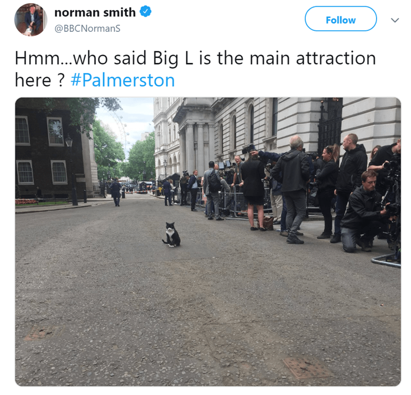 Product - norman smith Follow @BBCNormans Hmm...who said Big Lis the main attraction here? #Palmerston
