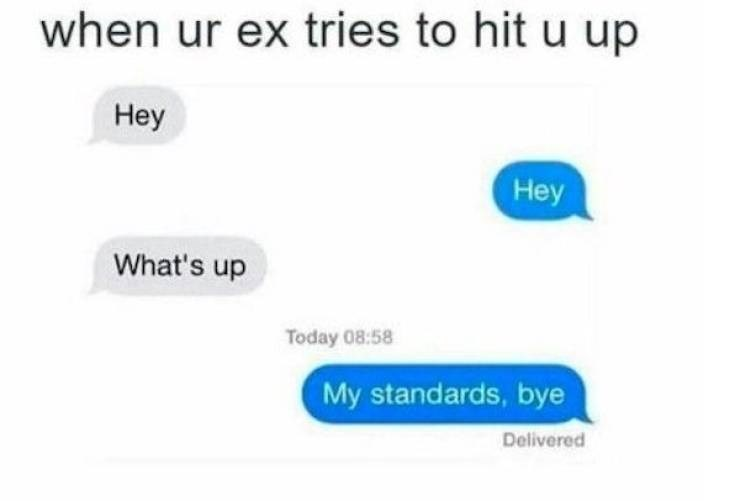 Text - when ur ex tries to hit u up Неy Hey What's up Today 08:58 My standards, bye Delivered