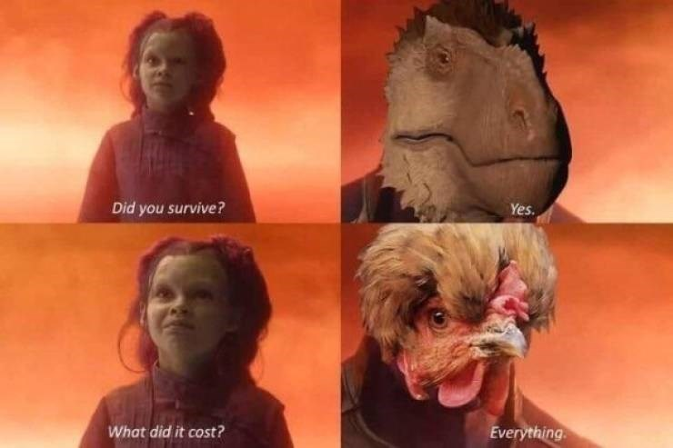 Funny prehistoric meme