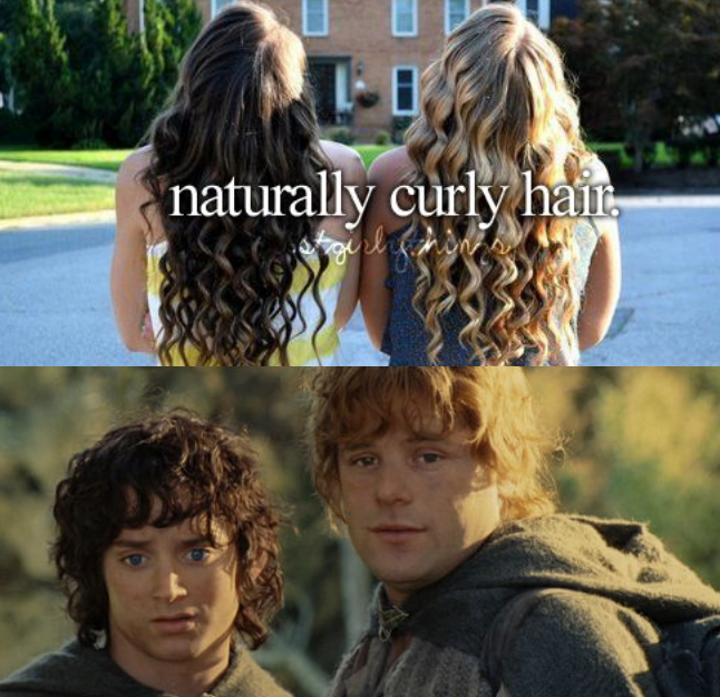 Funny Lord of the rings meme about having naturally curly hair, Frodo Baggins, Samwise Gamgee, Sean Astin, Elijah Wood.