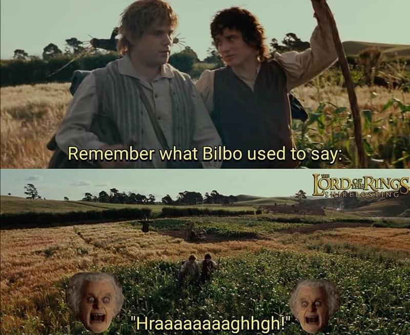 lotr meme - Movie - Remember what Bilbo used to say: THE ORDSRINGS SHREPOSTING Hraaaaaaaaghhgh!