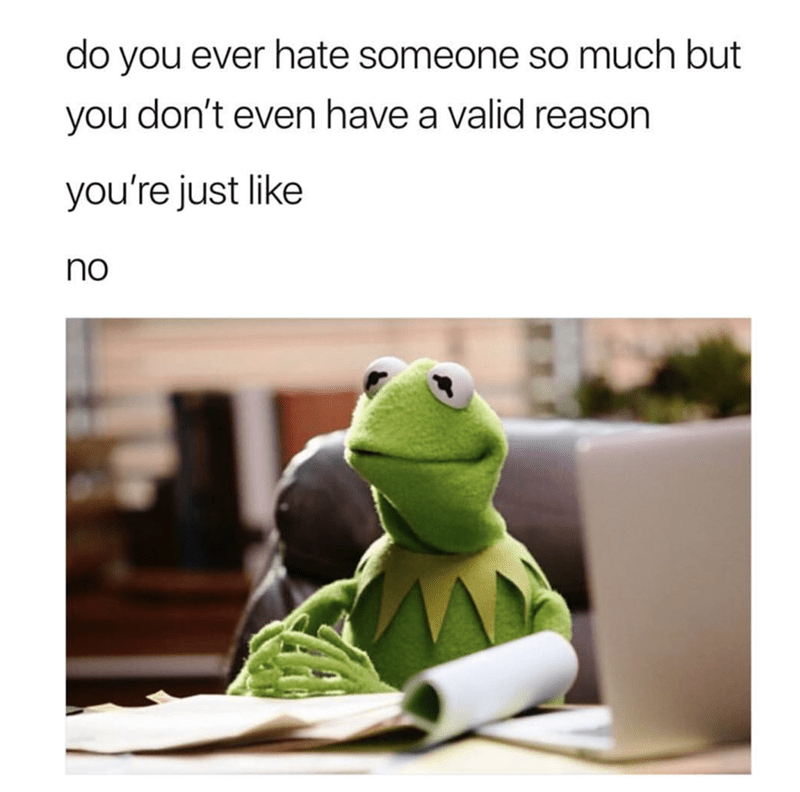 funny meme - Text - do you ever hate someone so much but you don't even have a valid reason you're just like no