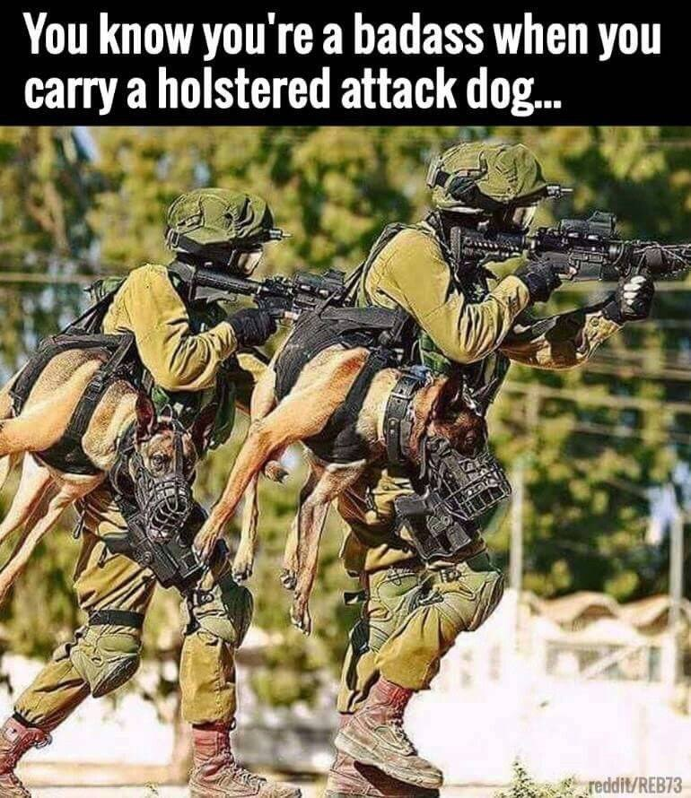 funny meme - Infantry - You know you're a badass when you carry a holstered attack dog.. TVG reddit/REB73