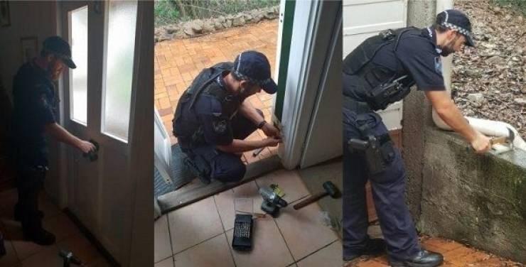 police - Window