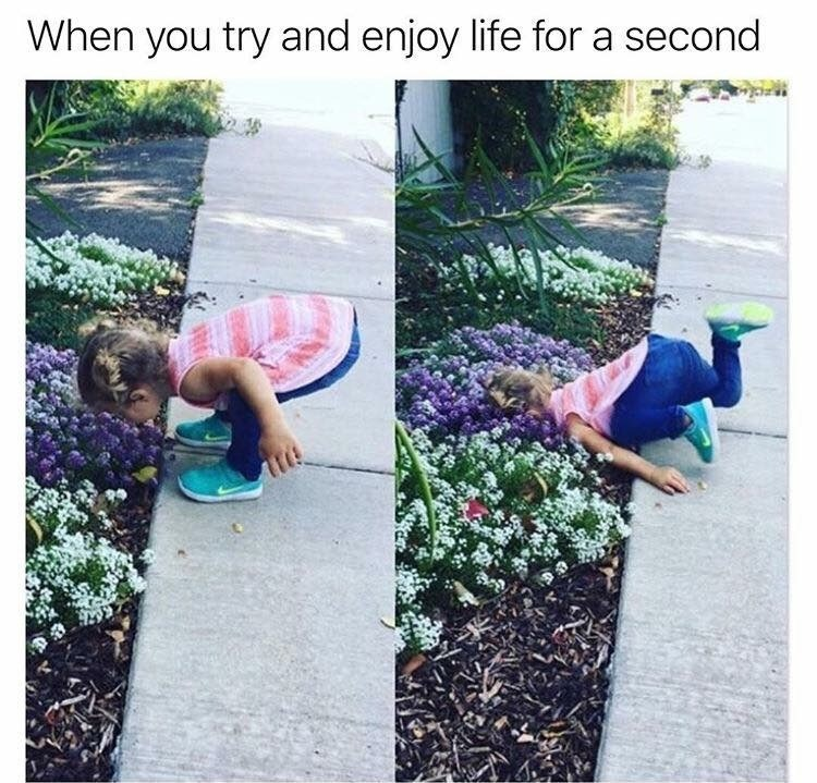 funky meme - Grass - When you try and enjoy life for a second
