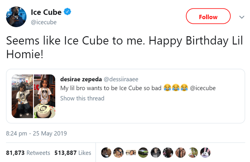 Text - Ice Cube Follow @icecube Seems like Ice Cube to me. Happy Birthday Lil Homie! desirae zepeda @dessiiraaee My lil bro wants to be Ice Cube so bad EC @icecube Show this thread ল 8:24 pm 25 May 2019 81,873 Retweets 513,887 Likes